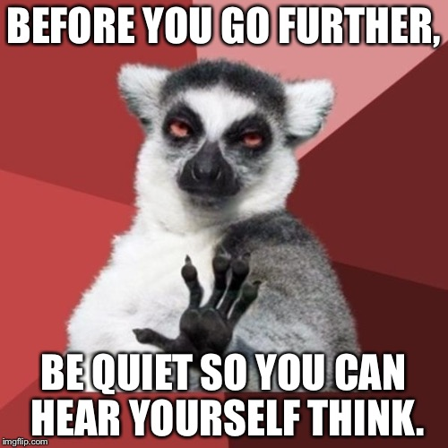 Shut up and use your brain | BEFORE YOU GO FURTHER, BE QUIET SO YOU CAN HEAR YOURSELF THINK. | image tagged in memes,chill out lemur,moment of silence,deep thought,shut up,misheard lyrics | made w/ Imgflip meme maker