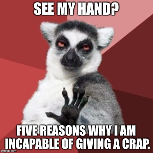 Talk to the hand | SEE MY HAND? FIVE REASONS WHY I AM INCAPABLE OF GIVING A CRAP. | image tagged in memes,chill out lemur,talk to the hand,i don't care,deep thoughts,crap advice | made w/ Imgflip meme maker