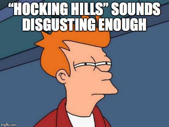 "Futurama Fry Meme | ""HOCKING HILLS"" SOUNDS DISGUSTING ENOUGH 