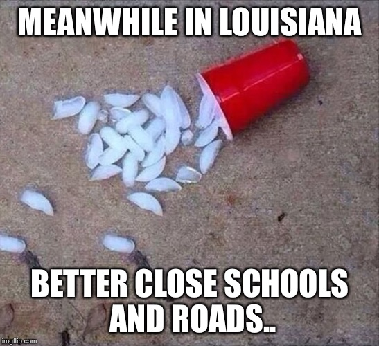 MEANWHILE IN LOUISIANA BETTER CLOSE SCHOOLS AND ROADS.. | image tagged in ice road closed | made w/ Imgflip meme maker