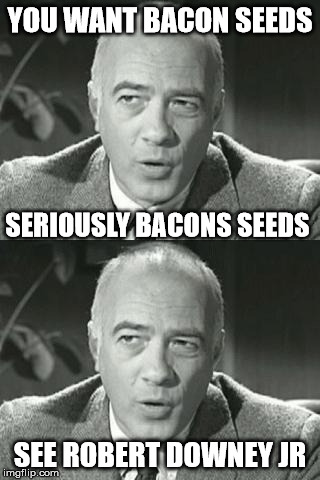 YOU WANT BACON SEEDS SEE ROBERT DOWNEY JR SERIOUSLY BACONS SEEDS | made w/ Imgflip meme maker