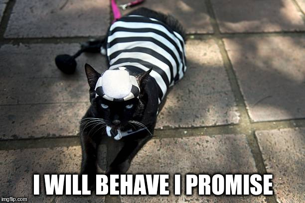 I WILL BEHAVE I PROMISE | made w/ Imgflip meme maker