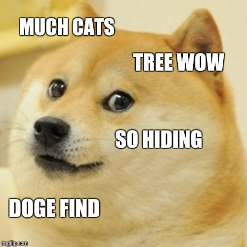 Doge Meme | MUCH CATS TREE WOW SO HIDING DOGE FIND | image tagged in memes,doge | made w/ Imgflip meme maker