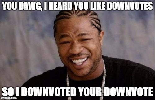 Yo Dawg Heard You Meme | YOU DAWG, I HEARD YOU LIKE DOWNVOTES SO I DOWNVOTED YOUR DOWNVOTE | image tagged in memes,yo dawg heard you | made w/ Imgflip meme maker