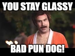 YOU STAY GLASSY BAD PUN DOG! | made w/ Imgflip meme maker