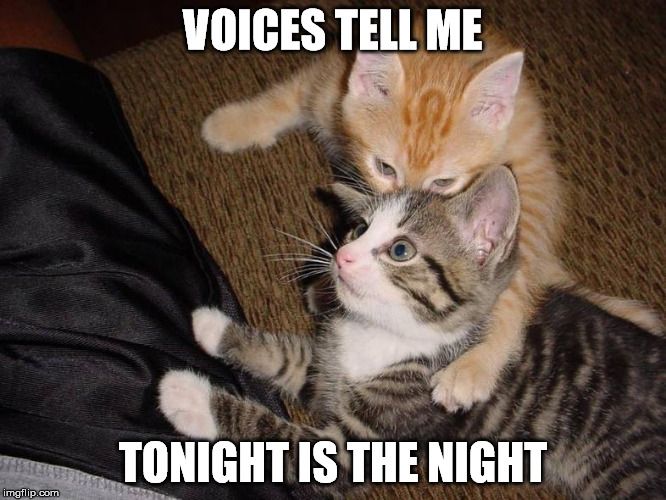 VOICES TELL ME TONIGHT IS THE NIGHT | made w/ Imgflip meme maker
