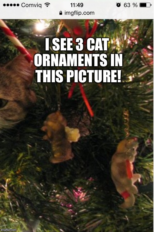 I SEE 3 CAT ORNAMENTS IN THIS PICTURE! | made w/ Imgflip meme maker