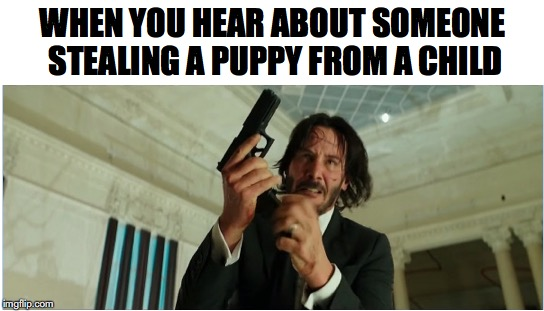 You've Triggered The Wrong Guy | WHEN YOU HEAR ABOUT SOMEONE STEALING A PUPPY FROM A CHILD | image tagged in john wick,puppy,glock | made w/ Imgflip meme maker