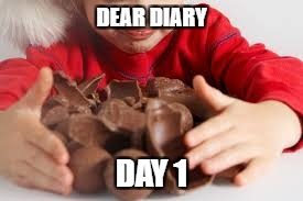 DEAR DIARY DAY 1 | made w/ Imgflip meme maker