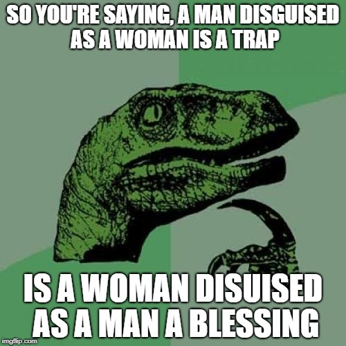 Philosoraptor Meme | SO YOU'RE SAYING, A MAN DISGUISED AS A WOMAN IS A TRAP IS A WOMAN DISUISED AS A MAN A BLESSING | image tagged in memes,philosoraptor | made w/ Imgflip meme maker