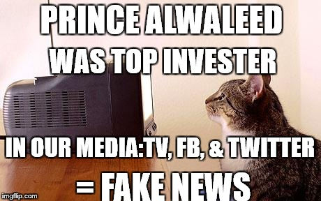 cat watching tv | PRINCE ALWALEED = FAKE NEWS WAS TOP INVESTER IN OUR MEDIA:TV, FB, & TWITTER | image tagged in cat watching tv | made w/ Imgflip meme maker