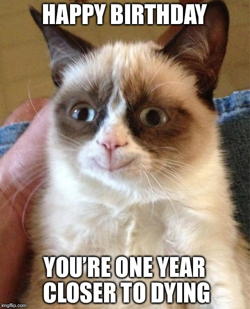 Grumpy Cat Happy | HAPPY BIRTHDAY YOU'RE ONE YEAR CLOSER TO DYING | image tagged in memes,grumpy cat happy,grumpy cat | made w/ Imgflip meme maker