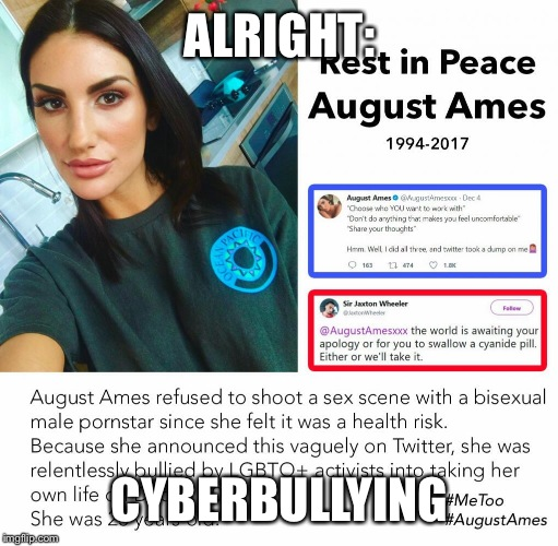 ALRIGHT: CYBERBULLYING | made w/ Imgflip meme maker