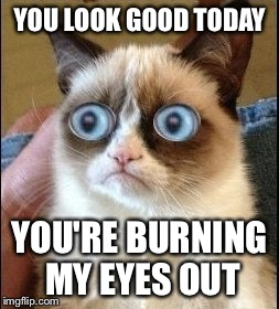 Grumpy Cat Shocked | YOU LOOK GOOD TODAY YOU'RE BURNING MY EYES OUT | image tagged in grumpy cat shocked | made w/ Imgflip meme maker
