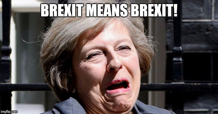 Theresa May - Brexiteers Ragin'? | BREXIT MEANS BREXIT! | image tagged in theresa may,brexit | made w/ Imgflip meme maker