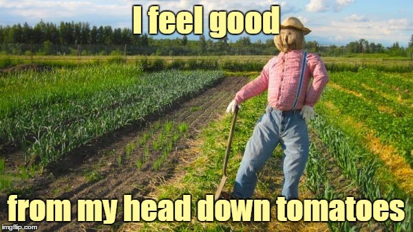 I feel good from my head down tomatoes | made w/ Imgflip meme maker