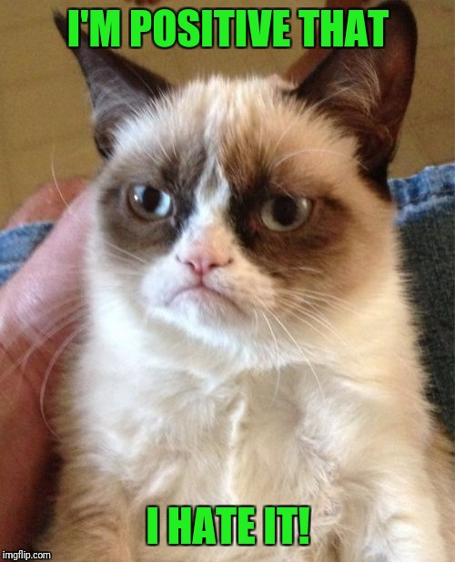 Grumpy Cat Meme | I'M POSITIVE THAT I HATE IT! | image tagged in memes,grumpy cat | made w/ Imgflip meme maker