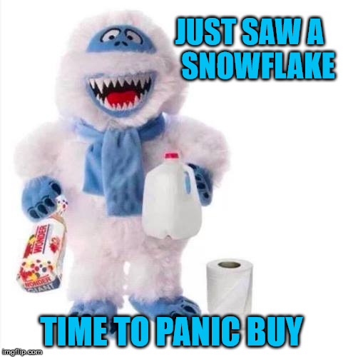 A Snowflake...Oh No!!! | JUST SAW A   SNOWFLAKE TIME TO PANIC BUY | image tagged in bumble shopping,snow,memes,panic,what if i told you,one does not simply | made w/ Imgflip meme maker