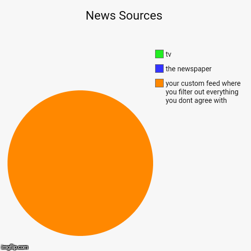 ok who doesnt filter out whatever they dont agree with now? | News Sources | your custom feed where you filter out everything you dont agree with, the newspaper, tv | image tagged in funny,pie charts,politics,cnn | made w/ Imgflip chart maker