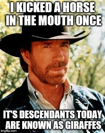 Chuck Norris Meme | I KICKED A HORSE IN THE MOUTH ONCE IT'S DESCENDANTS TODAY ARE KNOWN AS GIRAFFES | image tagged in memes,chuck norris,inferno390,funny | made w/ Imgflip meme maker