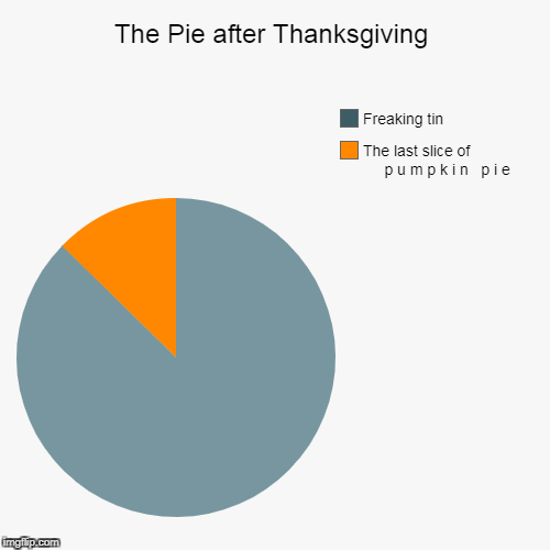 The Pie after Thanksgiving | The last slice of                        p u m p k i n   p i e, Freaking tin | image tagged in funny,pie charts | made w/ Imgflip pie chart maker