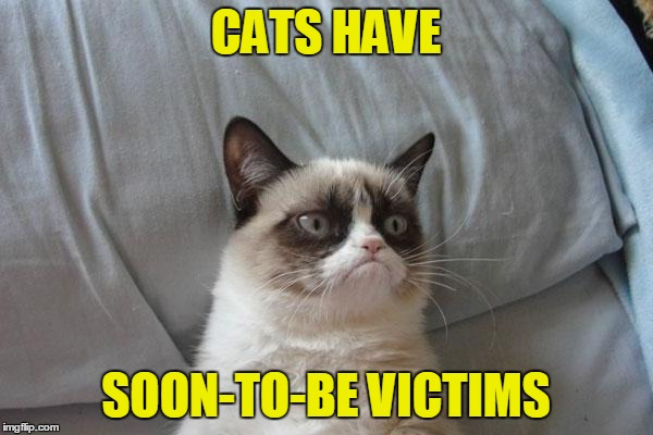 CATS HAVE SOON-TO-BE VICTIMS | made w/ Imgflip meme maker