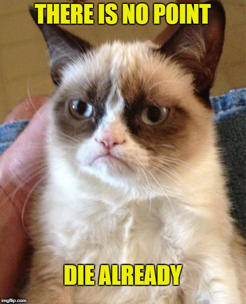 Grumpy Cat Meme | THERE IS NO POINT DIE ALREADY | image tagged in memes,grumpy cat | made w/ Imgflip meme maker