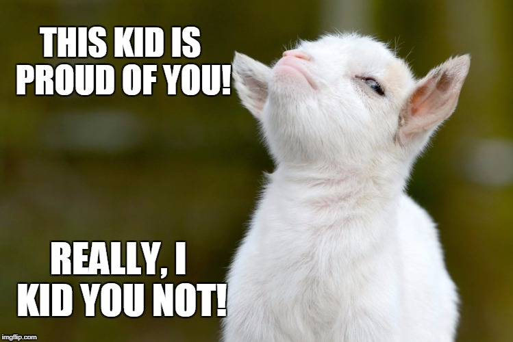 Proud baby goat | THIS KID IS PROUD OF YOU! REALLY, I KID YOU NOT! | image tagged in proud baby goat | made w/ Imgflip meme maker