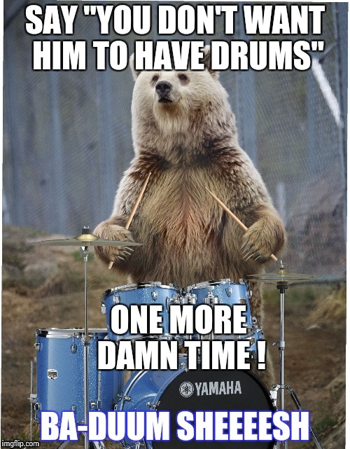 "Drummer bear | SAY ""YOU DON'T WANT HIM TO HAVE DRUMS"" ONE MORE DAMN TIME ! 
