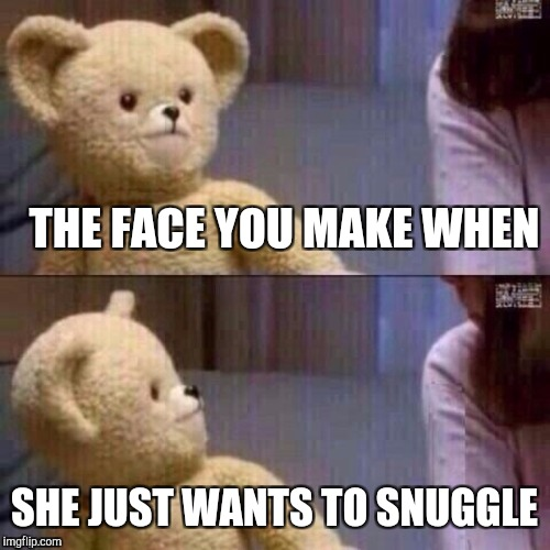 What? Teddy Bear | THE FACE YOU MAKE WHEN SHE JUST WANTS TO SNUGGLE | image tagged in what teddy bear | made w/ Imgflip meme maker