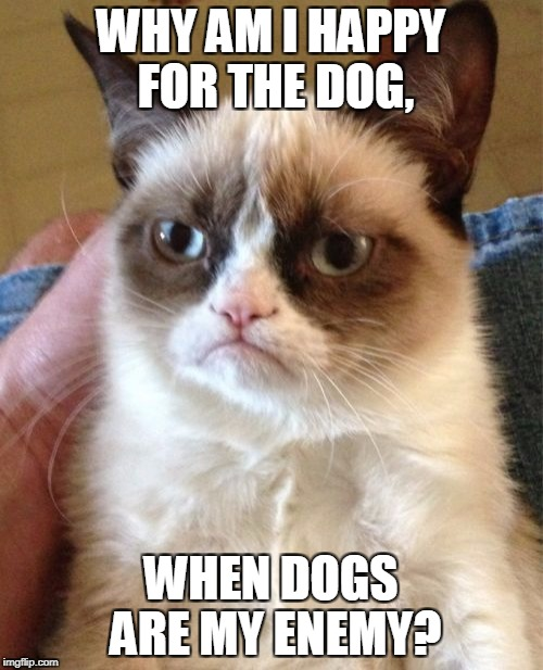 Grumpy Cat Meme | WHY AM I HAPPY FOR THE DOG, WHEN DOGS ARE MY ENEMY? | image tagged in memes,grumpy cat | made w/ Imgflip meme maker