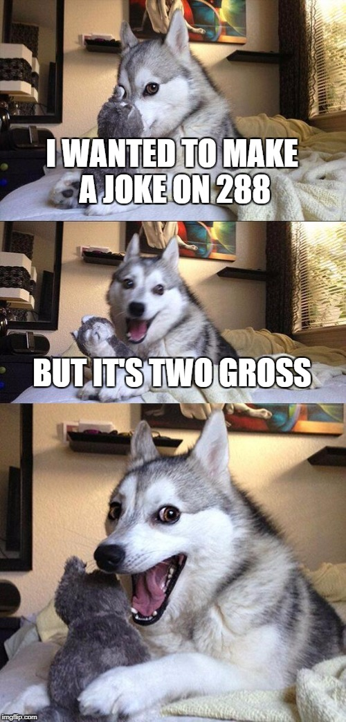 if you dont get it, search whats 2 gross is (cuz i dont want to spoil it) | I WANTED TO MAKE A JOKE ON 288 BUT IT'S TWO GROSS | image tagged in memes,bad pun dog,funny,two gross,ssby | made w/ Imgflip meme maker