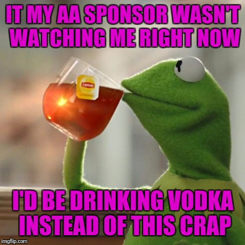 But Thats None Of My Business Meme | IT MY AA SPONSOR WASN'T WATCHING ME RIGHT NOW I'D BE DRINKING VODKA INSTEAD OF THIS CRAP | image tagged in memes,but thats none of my business,kermit the frog | made w/ Imgflip meme maker