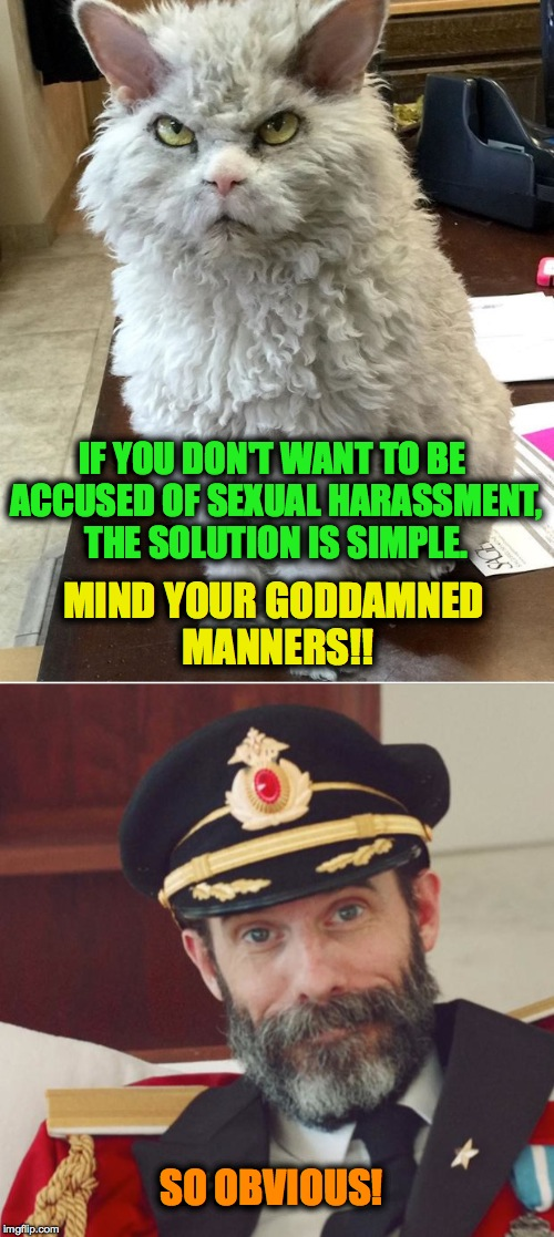 Advice For Both Genders And All Orientations | IF YOU DON'T WANT TO BE ACCUSED OF SEXUAL HARASSMENT, THE SOLUTION IS SIMPLE. MIND YOUR GO***MNED MANNERS!! SO OBVIOUS! | image tagged in manners | made w/ Imgflip meme maker