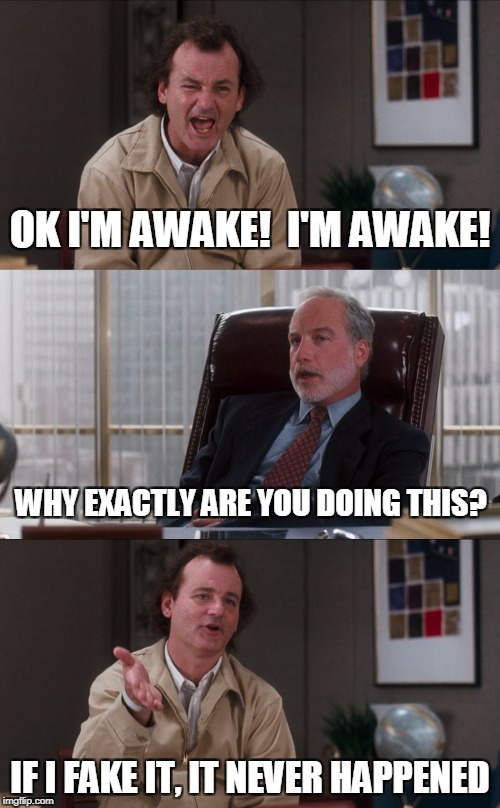 Bill Murray Fake It | OK I'M AWAKE!  I'M AWAKE! IF I FAKE IT, IT NEVER HAPPENED WHY EXACTLY ARE YOU DOING THIS? | image tagged in bill murray fake it | made w/ Imgflip meme maker