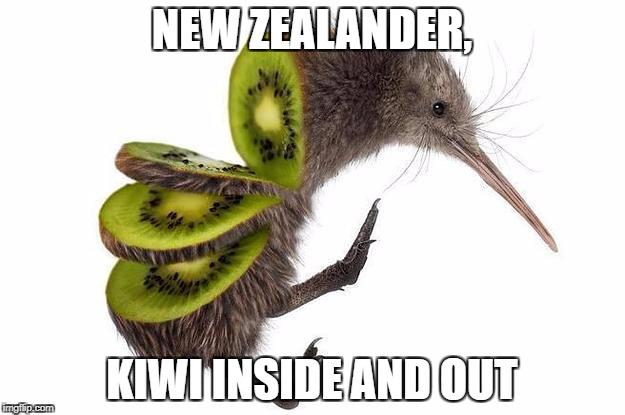 New Zealander | NEW ZEALANDER, KIWI INSIDE AND OUT | image tagged in kiwi,new zealand,fruit,birds,memes | made w/ Imgflip meme maker