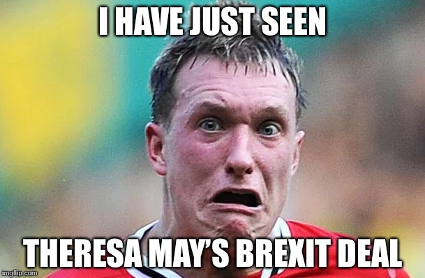 I HAVE JUST SEEN THERESA MAY'S BREXIT DEAL | image tagged in i have just seen | made w/ Imgflip meme maker