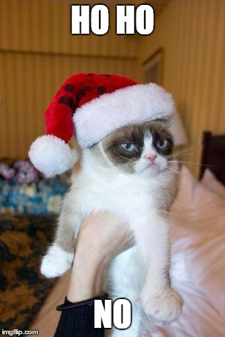 It's almost Christmas!!! | HO HO NO | image tagged in memes,grumpy cat christmas,grumpy cat | made w/ Imgflip meme maker
