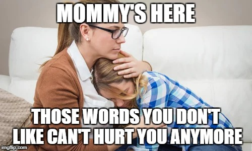 MOMMY'S HERE THOSE WORDS YOU DON'T LIKE CAN'T HURT YOU ANYMORE | made w/ Imgflip meme maker
