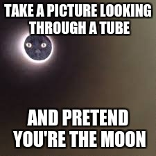 I want to do this now! | TAKE A PICTURE LOOKING THROUGH A TUBE AND PRETEND YOU'RE THE MOON | image tagged in cat,moon,memes,pets rule | made w/ Imgflip meme maker