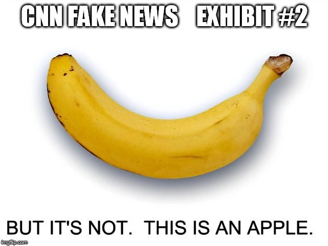 Deception Series | CNN FAKE NEWS    EXHIBIT #2 | image tagged in cnn fake news | made w/ Imgflip meme maker