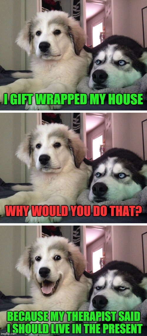 Bad pun dogs | I GIFT WRAPPED MY HOUSE BECAUSE MY THERAPIST SAID I SHOULD LIVE IN THE PRESENT WHY WOULD YOU DO THAT? | image tagged in bad pun dogs,memes | made w/ Imgflip meme maker