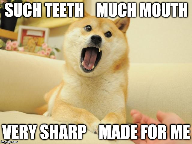 SUCH TEETH    MUCH MOUTH VERY SHARP    MADE FOR ME | image tagged in such teeth | made w/ Imgflip meme maker