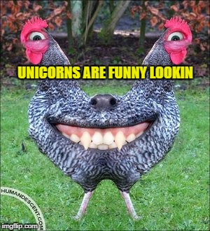 UNICORNS ARE FUNNY LOOKIN | made w/ Imgflip meme maker