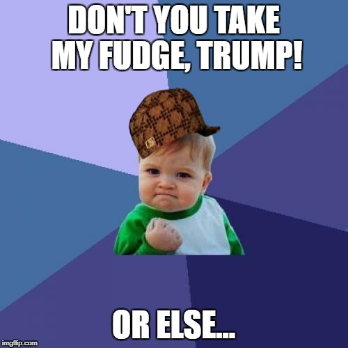 Success Kid Meme | DON'T YOU TAKE MY FUDGE, TRUMP! OR ELSE... | image tagged in memes,success kid,scumbag | made w/ Imgflip meme maker