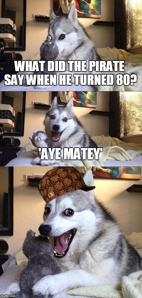 Just Take A Second And Think | WHAT DID THE PIRATE SAY WHEN HE TURNED 80? 'AYE MATEY' | image tagged in memes,bad pun dog,scumbag,pirates,aye matey | made w/ Imgflip meme maker