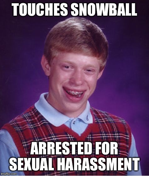 Bad Luck Brian Meme | TOUCHES SNOWBALL ARRESTED FOR SEXUAL HARASSMENT | image tagged in memes,bad luck brian | made w/ Imgflip meme maker