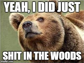 Smug Bear Meme | YEAH, I DID JUST SHIT IN THE WOODS | image tagged in memes,smug bear | made w/ Imgflip meme maker