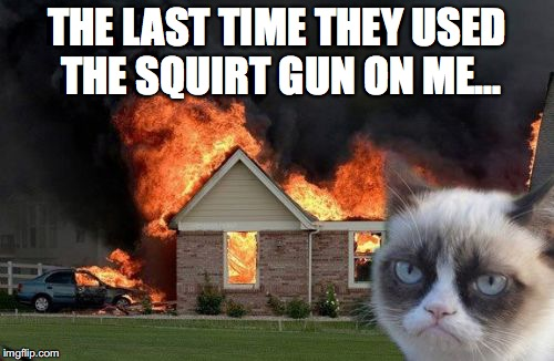 Never mess with this cat... | THE LAST TIME THEY USED THE SQUIRT GUN ON ME... | image tagged in memes,burn kitty,grumpy cat | made w/ Imgflip meme maker