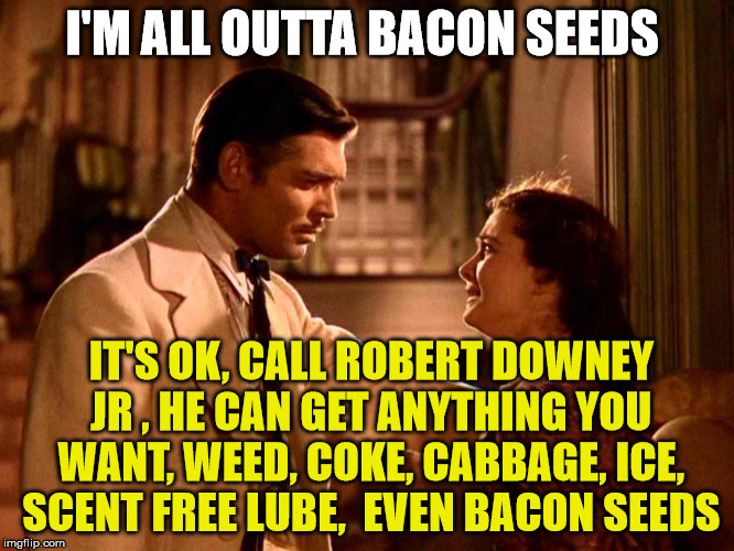 I'M ALL OUTTA BACON SEEDS IT'S OK, CALL ROBERT DOWNEY JR , HE CAN GET ANYTHING YOU WANT, WEED, COKE, CABBAGE, ICE, SCENT FREE LUBE,  EVEN BA | made w/ Imgflip meme maker